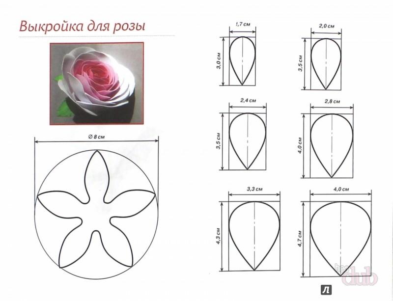 Фоамиран. Выкройки цветов