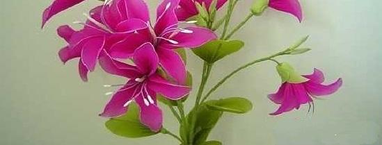 Цветы «Крестик»